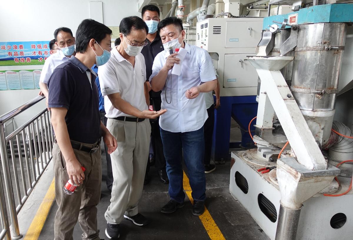 国宝桥米公司稻米加工生产线