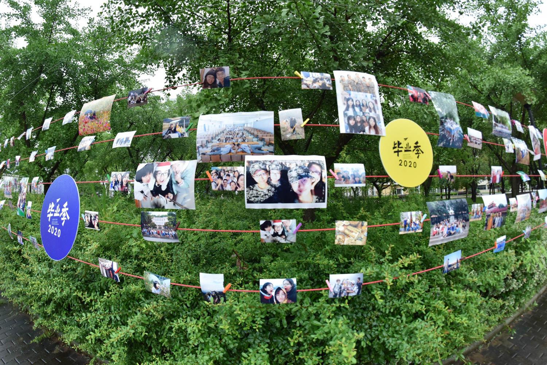 毕业典礼上的照片墙,承载着毕业生们的回忆【小付 摄】