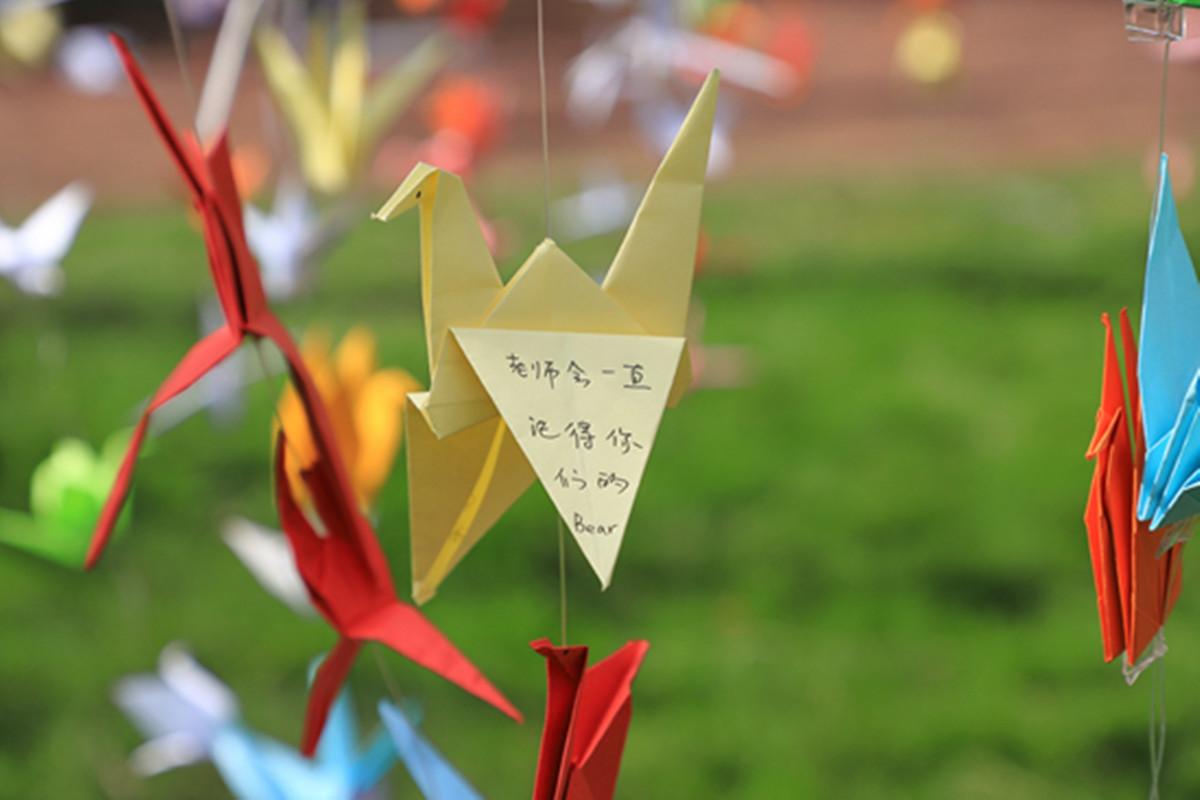 华中农业大学教职工万枚纸鹤送学子。华中农业大学宣传部供图