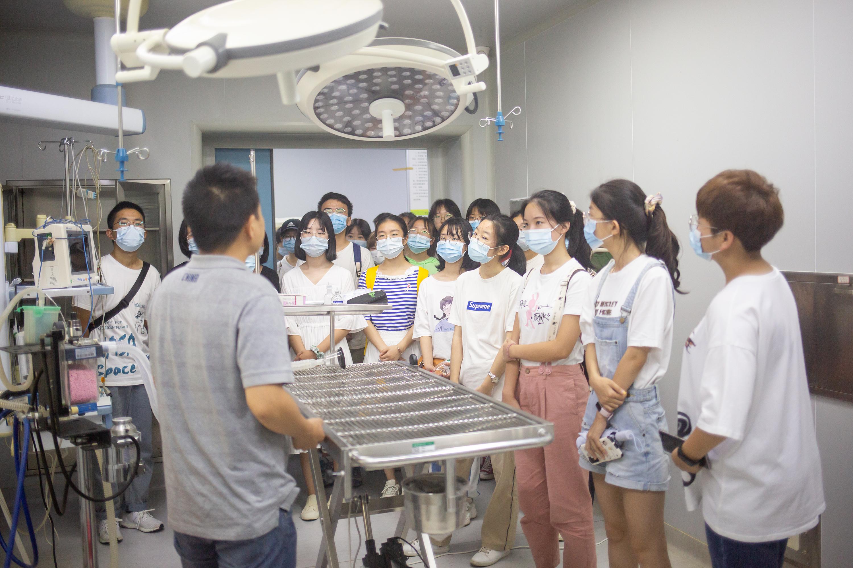 老师给新生讲解动物医院的手术台(学通社记者 李靖威 摄)