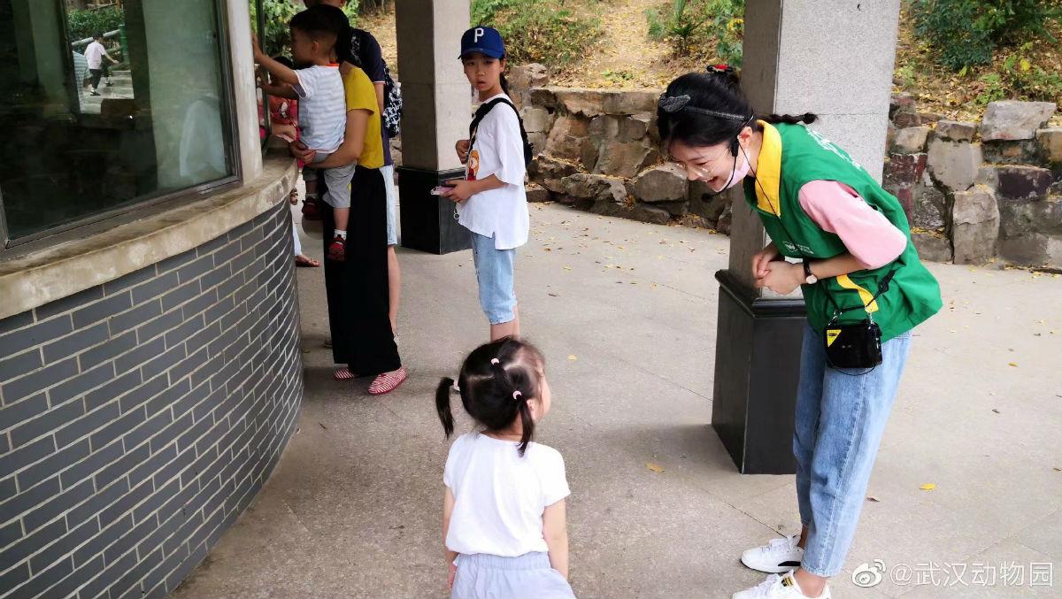 武汉动物园志愿者牟星美为小伴侣讲解问题【本人供图】