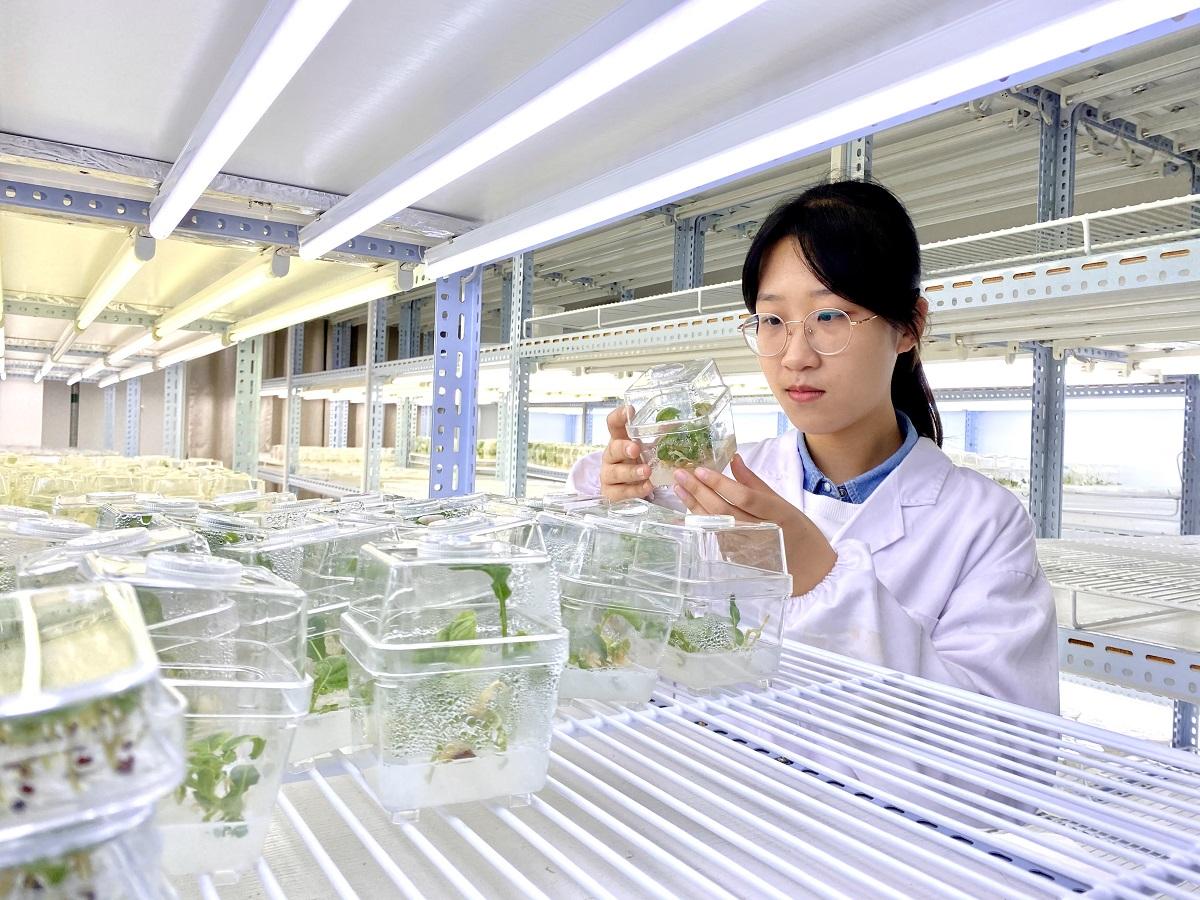杜逸飞-实验室照片