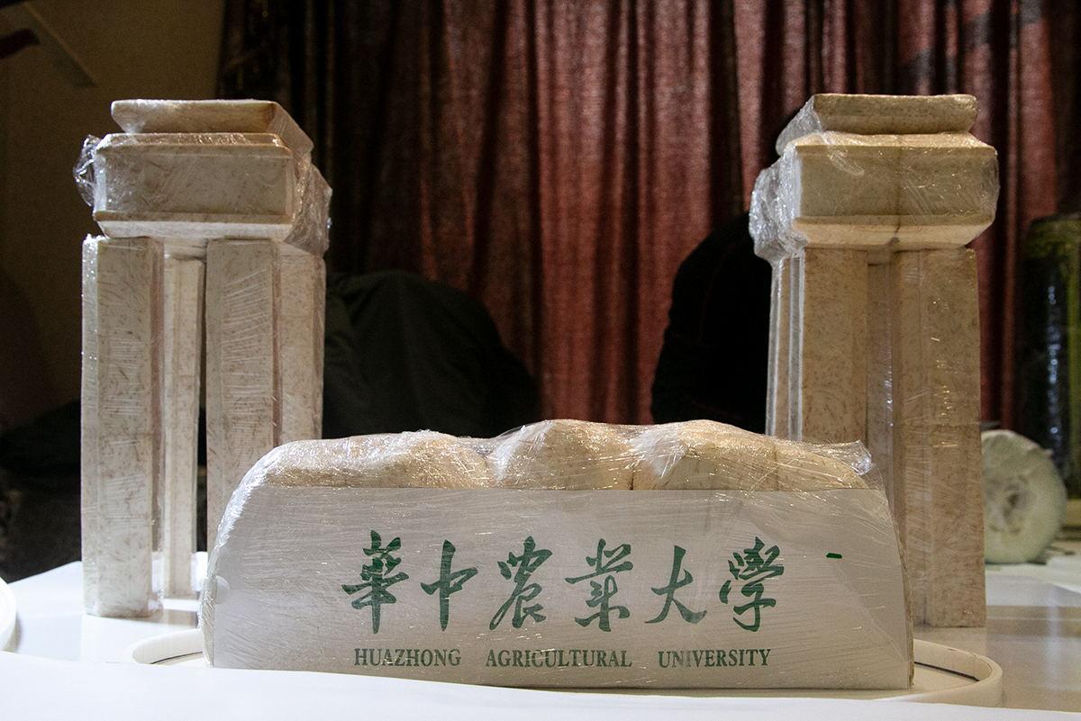 国际学术交流中心用食物做的西大门(学通社记者 朱亿摄)