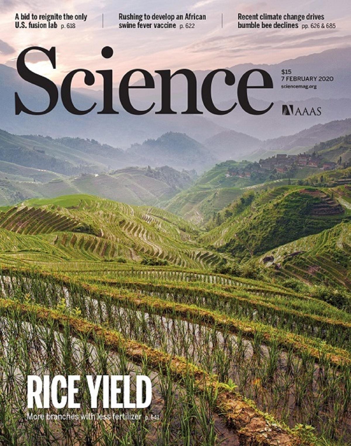 该成果以《科学》封面文章的形式报道。傅向东供图