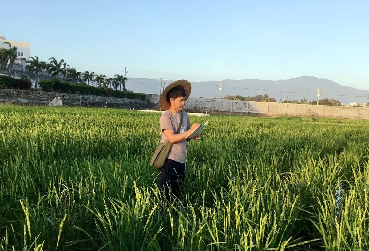 疫情期间,杨海川在水稻南繁基地记录
