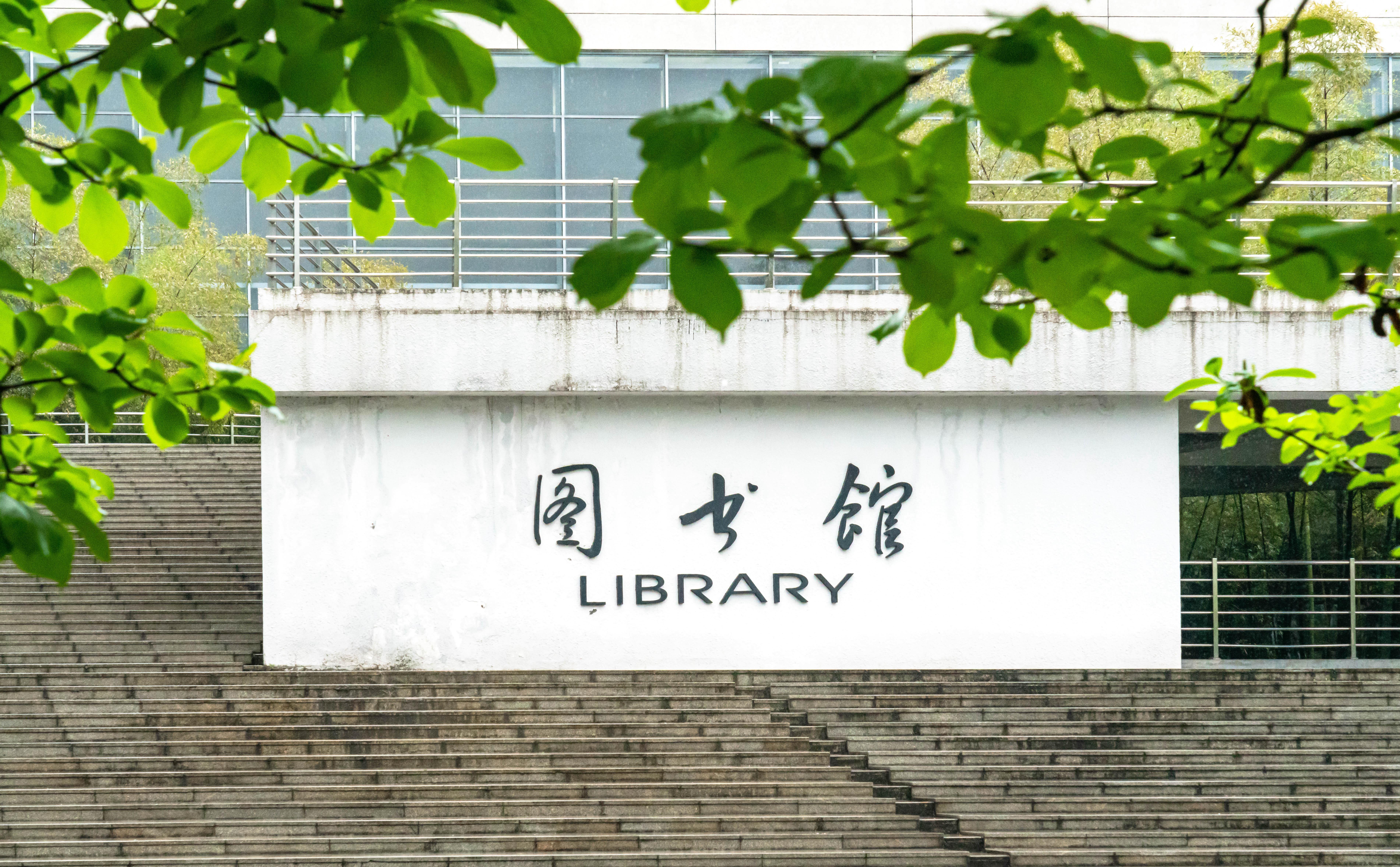 ▲图书馆外的玉兰树披上了新绿(周东琴 摄)