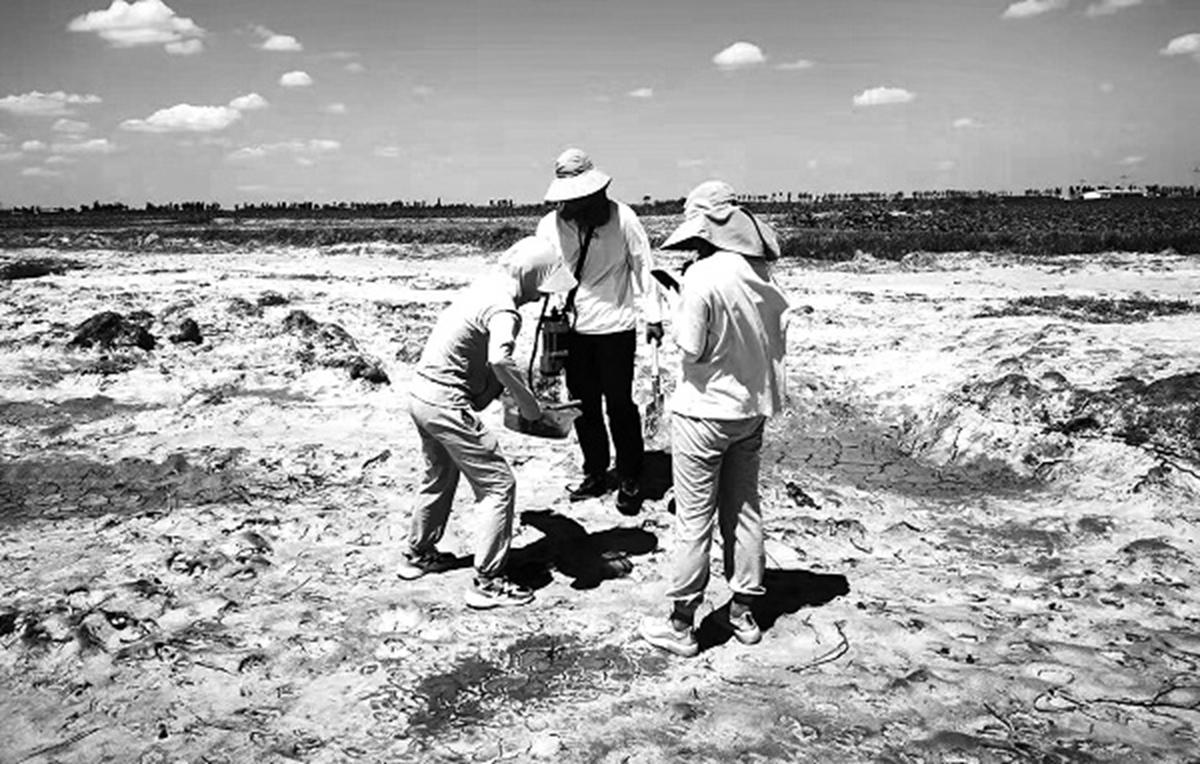 土壤组成员在盐碱地采集土壤光谱信息