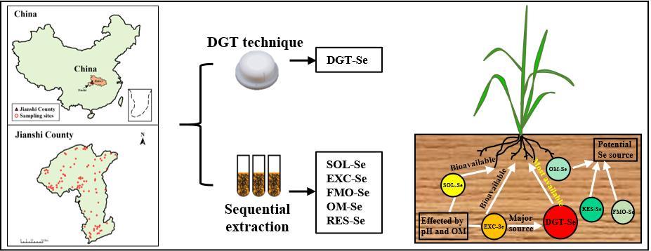 基于传统连续浸提方法和DGT技术对大量天然富硒土壤样品进行了分析,明确了恩施土壤硒生物有效性差异及其关键影响因素